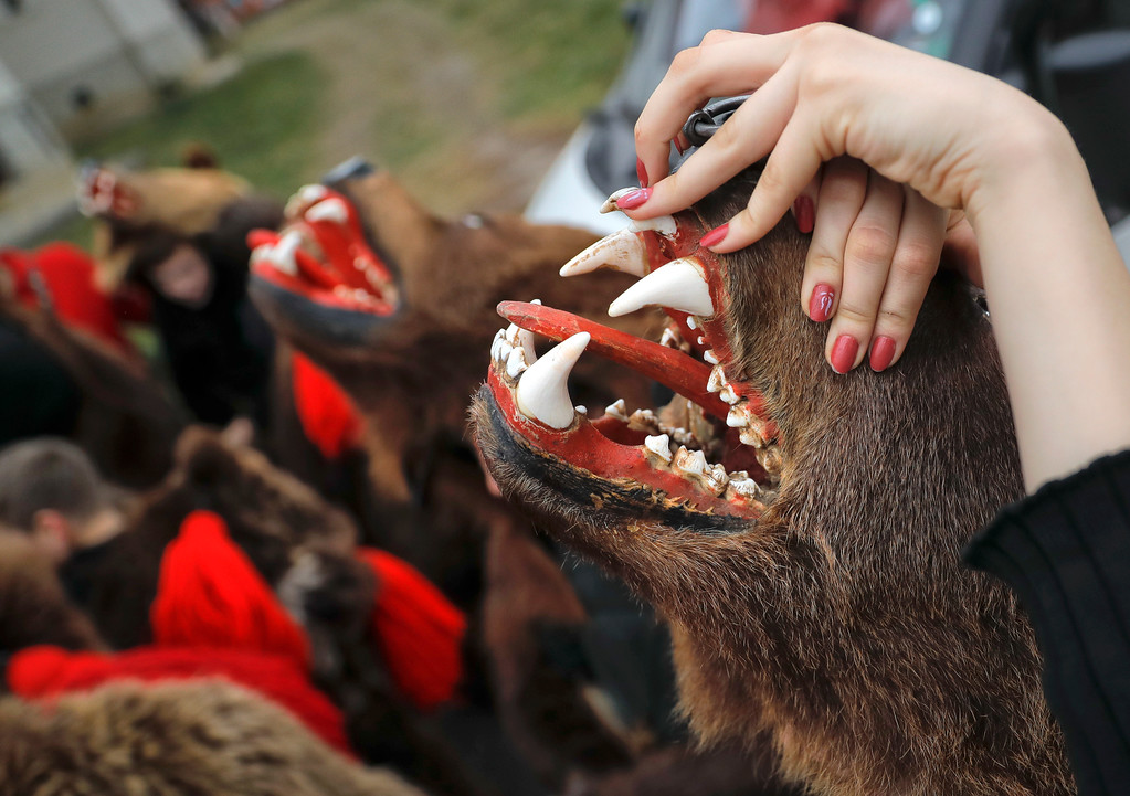 . In this Saturday, Dec. 30, 2017, picture Raluca Atrejei stretches her hands during an annual bear parade in Comanesti, Romania. The tradition, originating in pre-Christian times, when dancers, wearing colored costumes or animal furs, went from house to house in villages singing and dancing to ward off evil, has moved to Romania\'s cities, where the ritual is performed for money.(AP Photo/Vadim Ghirda)