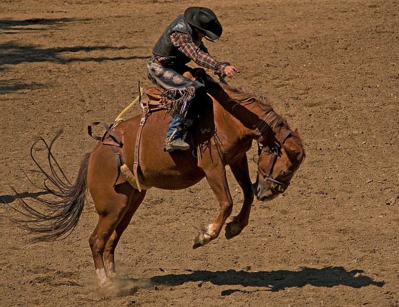 COOMBS RODEO-2009-3682A.jpg