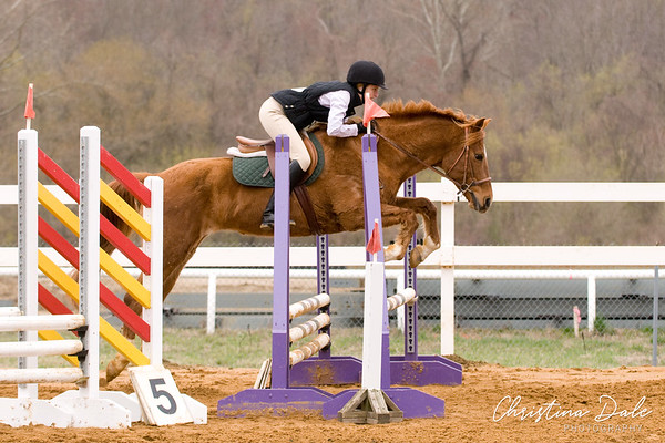 """Mini Jumpers 2'6"""" Time First Jump Off"""