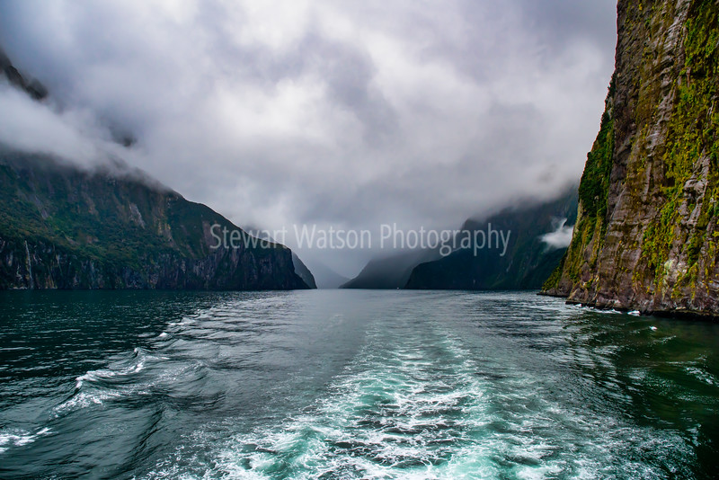 The Vibrant colour of the water in magical Milford Sound even in the pouring rain