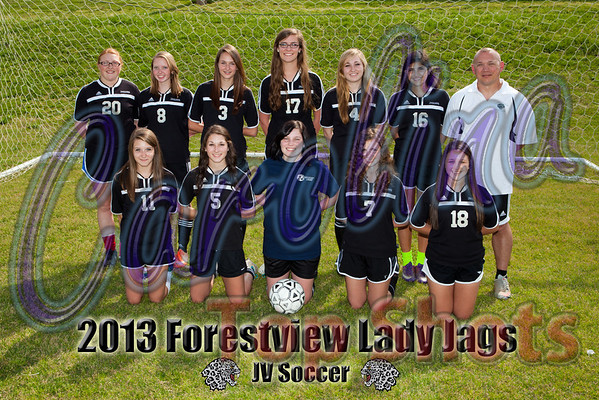2013 Forestview Team Photos