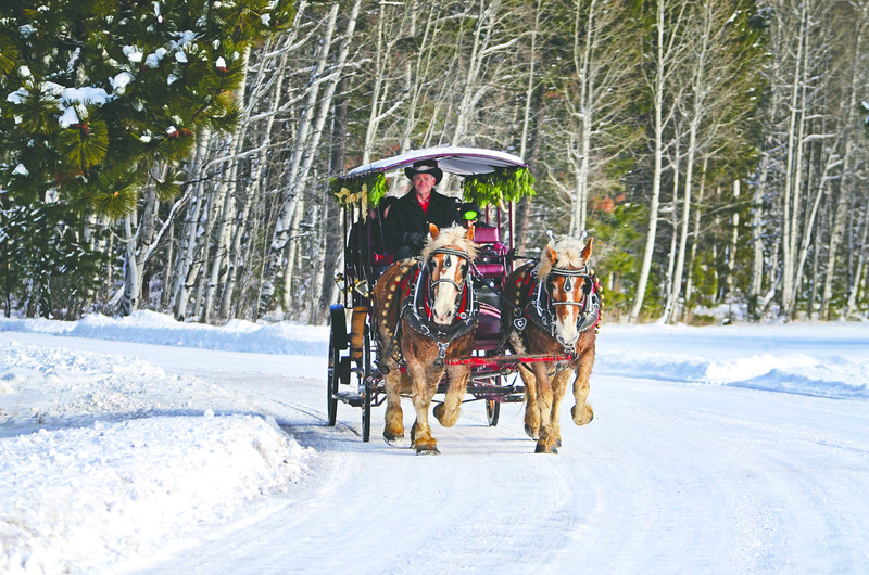 BBR-Carriage-Rides-Aspens-KateThomasKeown_DSC2534-rt-newsprint.jpg