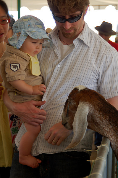 Kids and farm animals! What could be cuter?