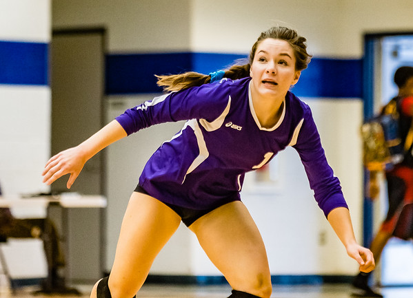 Volleyball, JV, 2015, 10-06-15, Paschal-4