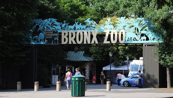 Bronx Zoo (Aug 2009)