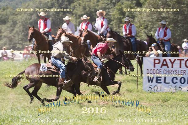 Friday Mule Race  2016 National Championship Chuckwagon Races
