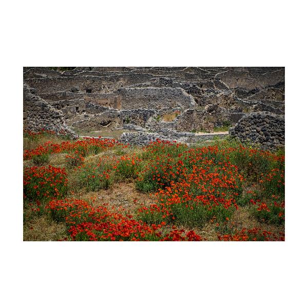 128_Pompeii_10x10.jpg
