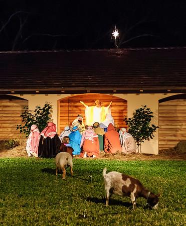 Church LIving Nativity - Christmas 2007