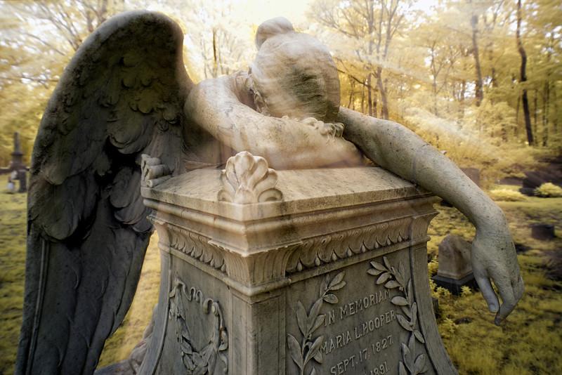 Infrared Weeping Angel.jpg