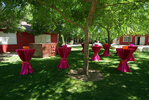 Jason & Amy's Wedding, 5-15-2010