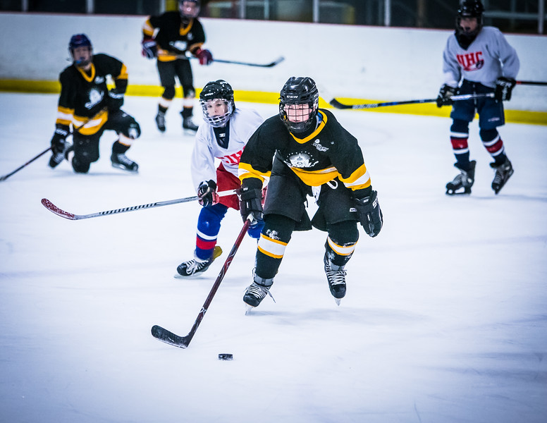 Bruins2-595.jpg