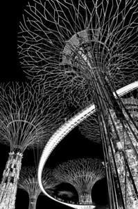 Singapore Places-of-Interest