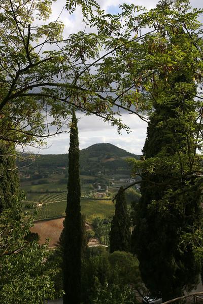 Montapulacino