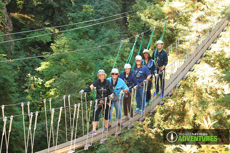 redwood_bridge_1473444361288.jpg