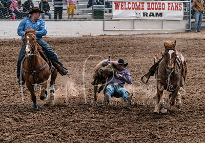 Tucson Rodeo 2018