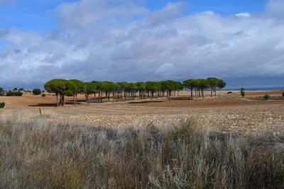 LANDSCAPES OF SPAIN
