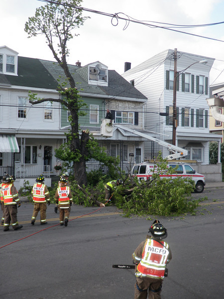 mahanoy city tree incident 5-8-2010 034.JPG