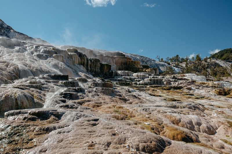 Mammoth-Hot-Springs-Yellowstone-Mroczek-2779.jpg