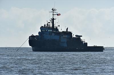 Jekyll Island Boat Tours - Golden Ray 10-03-19