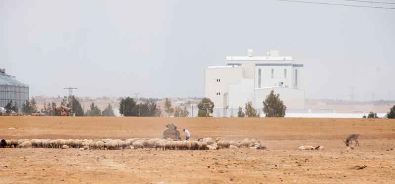 Israel_1720.jpg
