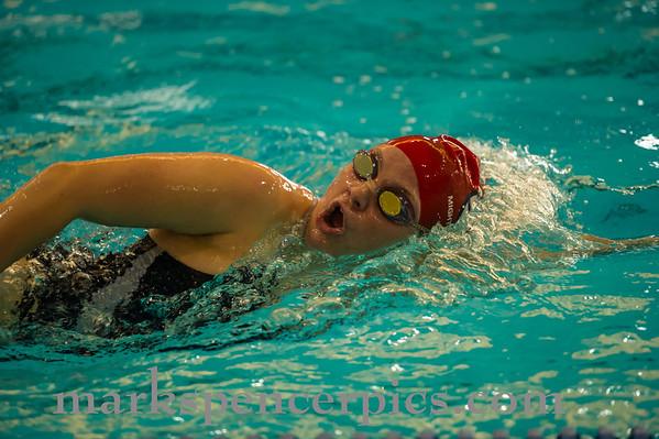 Swim SHS vs SHHS 1-4-13