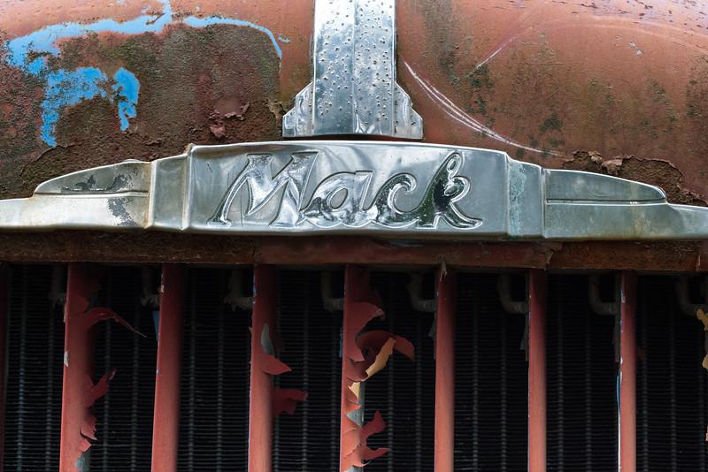 Junk Yard Dawgs_0782