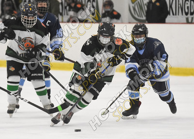 Mansfield/Oliver Ames - Franklin Girls Hockey 2-3-21