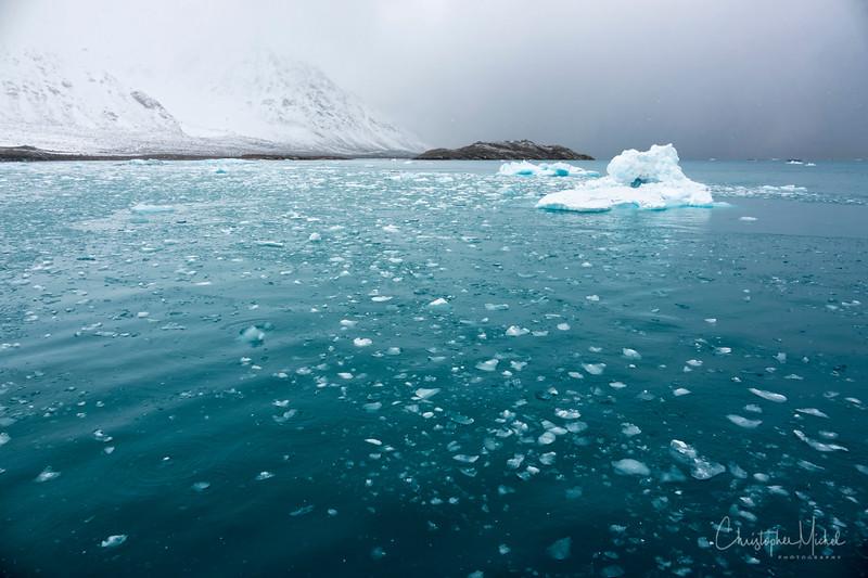 9-2-16175341 magdalene fjord, svalbard.jpg