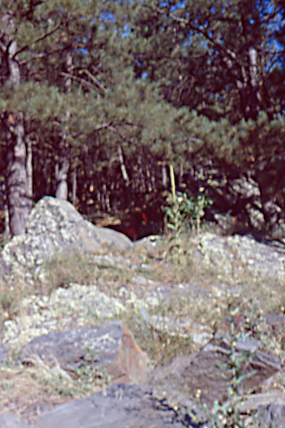 1973-09 - Hiking in Black Hills