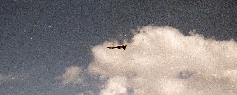 1991 10 26 - Robins AFB, GA Airshow 07.jpg