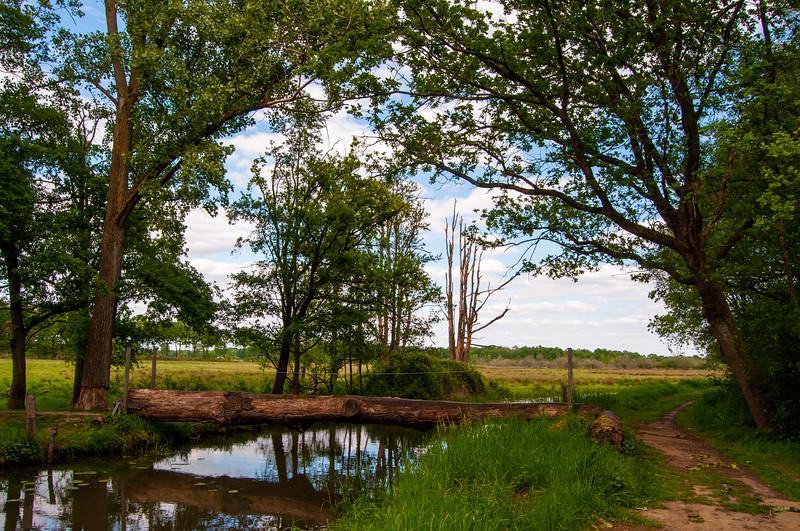 GrensPark Kempen~Broek, omgeving Stramprooierbroek & St.-Maartensheide 40.jpg