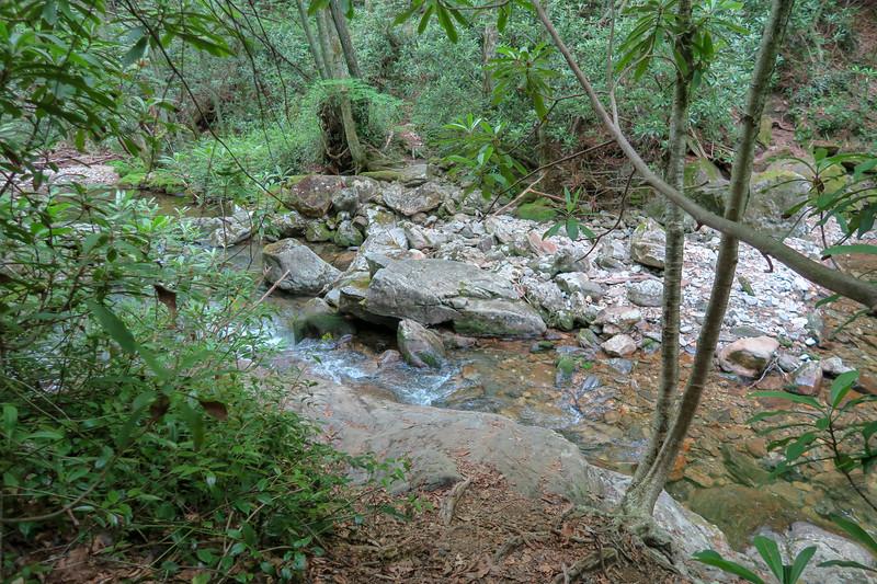 Greasy Cove Trail -- 4,200'