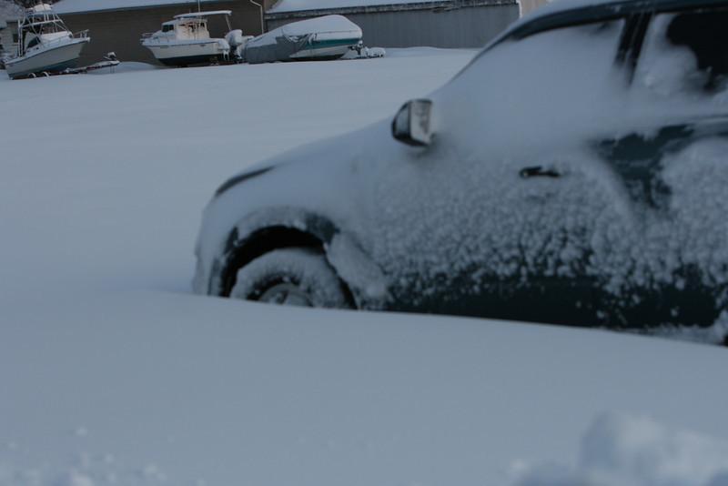 snow 2010 feb IMG_2387 (20).JPG
