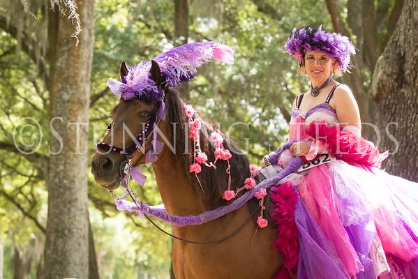2016 Ocala Classic Paso Fino Horse Show