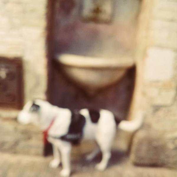 Assisi_Moblie_ (60).jpg