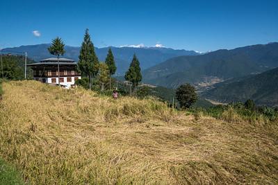 Bhutan galleries