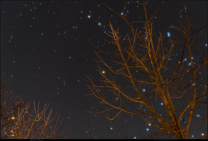 Winter Stars by Panagiotis Xipteras.jpg