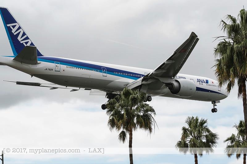 F20170219a110000_7991-avions cachés par palmiers-atterissage.jpg