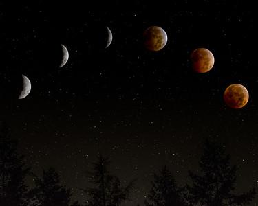 Lunar Eclipes 10-08-2014
