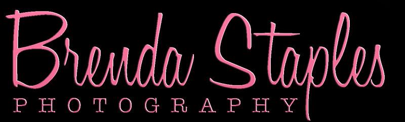 BSP_retroLogojpg pink on black cropped very small.jpg