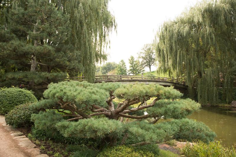 Chicago Botanic Garden 110.jpg
