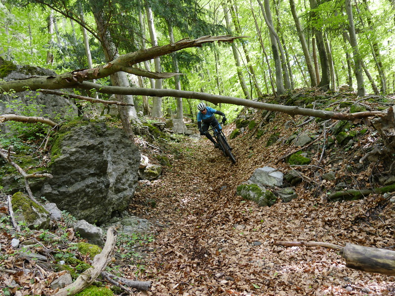 TR MTB Walensee Supertrails Camp_20160428_5379.JPG