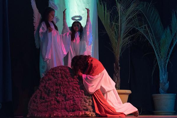 Passion of Jesus Christ