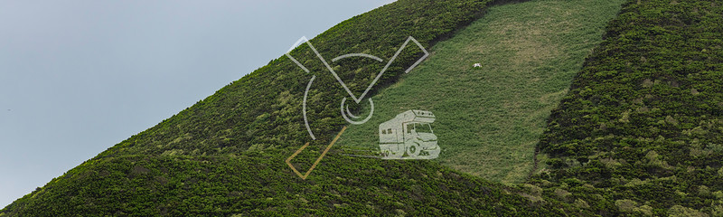 abstract funny looking green field paddick with one cow at the side of the Cabeço Gordo caldera on Faial Island,