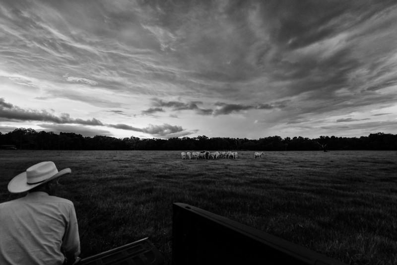 Bill Bathle Sunset (1 of 8).jpg