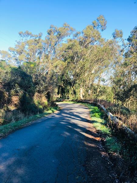 Sneath Trail