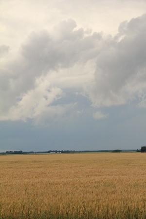 Rustic Retreat Souris Manitoba