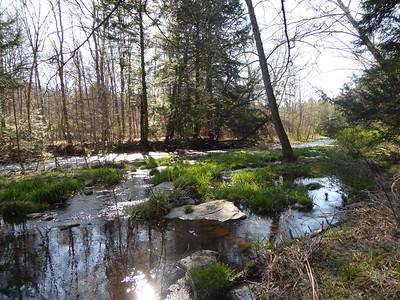 Tunkhannock Creek Trail
