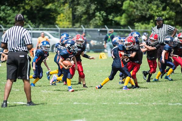 Junior Falcons