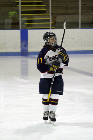 Aviators Bantam 3, 2008 - 2009 Season